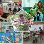 Мадоу 15 – Муниципальное автономное дошкольное образовательное учреждение г. Хабаровска Детский сад комбинированного вида № 15