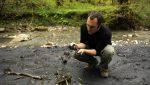Описание профессии эколог – Профессия эколог (кто такой, чем занимается, как стать)   должностные обязанности эколога, требования к должности